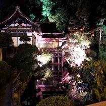 宝登山神社ライトアップ庭