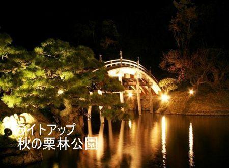 【アイフレ】公園ライトアップ