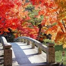 ◇京の風景 紅葉