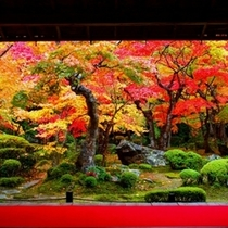 ◇京の風景 紅葉3