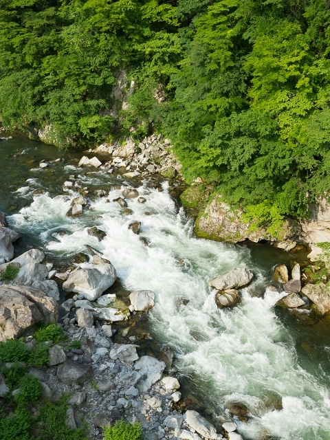 鬼怒川の清流