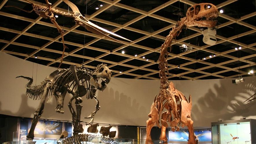 【近隣施設】のんほいパーク内自然史博物館