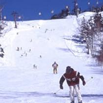 *東館山スキー場