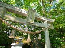フクロウ神社