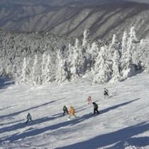 プラン用天元台スキー場(ゲレンデ)