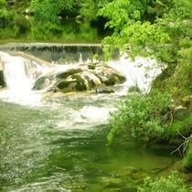 2015年 初夏の最上川源流の大樽川。