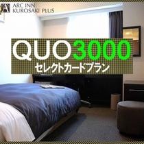 QUO3000プラン