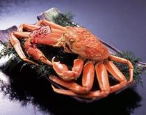 松葉蟹イメージ