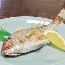 【鯛の塩焼き】棚底港は、天然鯛の釣り場としては日本一!