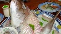 地元で水揚げされる新鮮な地魚と、 季節の味覚でおもてなし☆!※夕食一例。