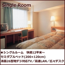 シングルルーム*セミダブルベッド(200×120cm) 12〜15平米