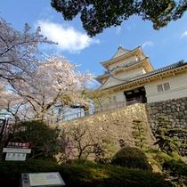 *【周辺】小田原城へは車で約15分。春にはお花見も楽しめます。
