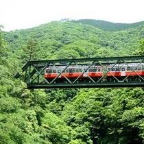 *【周辺】箱根登山電車。6月~7月にかけては、鉄道沿いのアジサイが見頃になります。