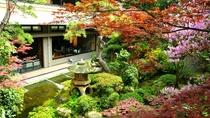 ◇美しい庭園