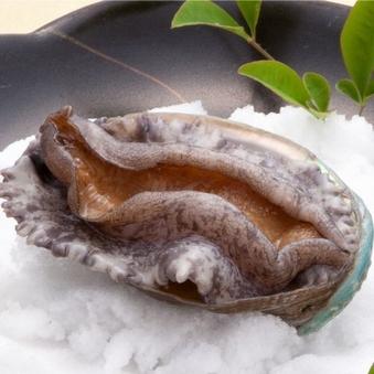 鮑陶板焼き&季節の旬食材鍋付き会席