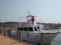 イルカウオッチング船フリッパー号