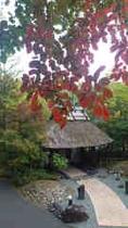 【和らく】山門と紅葉