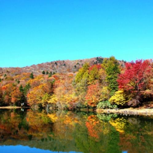 紅葉の茶臼山