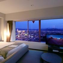 最上階10階特別室からの眺望