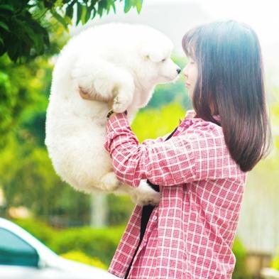 【ワンちゃんと一緒】和食・洋食から選べるブッフェ朝食付き〜愛犬と過ごすリゾートライフ