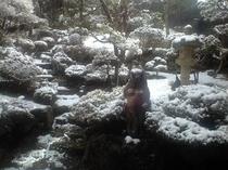 当館庭園の雪景色