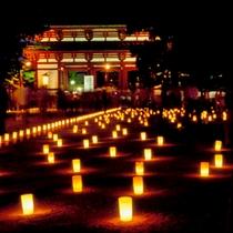 【夏】燈花会≪東大寺≫☆幻想的な光が彩る奈良の夏の風物詩です。