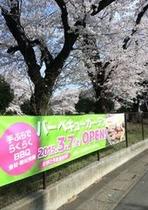 稲荷山公園の桜