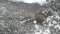 雪の天の川