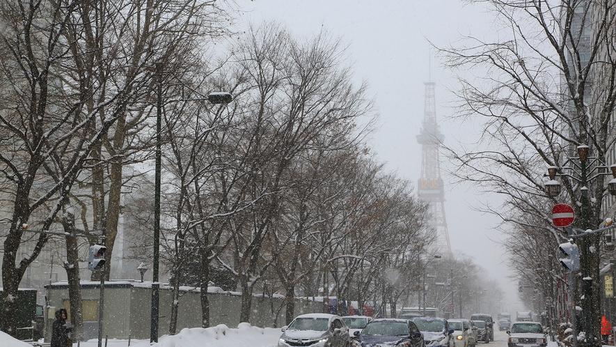【大通公園/雪のテレビ塔】