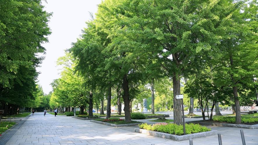 【中島公園まで約10分】