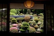 客室から眺める日本庭園