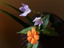 館内には生花が色を添えます。