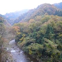 【周辺情報】竹田川渓谷の紅葉