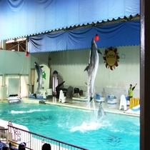 【周辺観光】おたる水族館