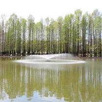 【別所沼公園】隣接した別所沼公園は自然豊かな場所です。