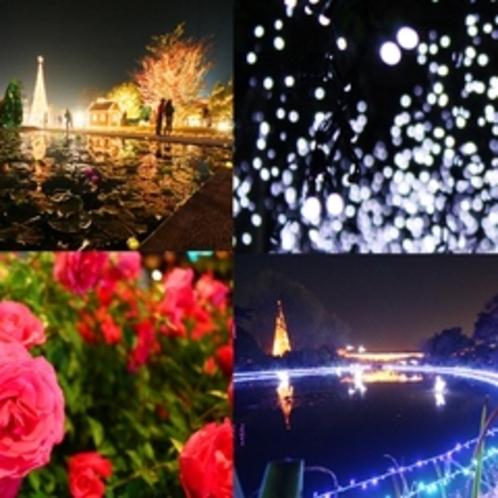 あしかがフラワーパーク 花と光のイルミネーションが幻想的な世界観を与えます♪冬季の大人気スポット