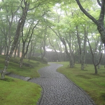 梅雨時期の箱根美術館