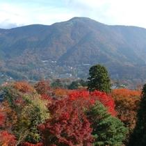 紅葉に染まる明星ヶ岳