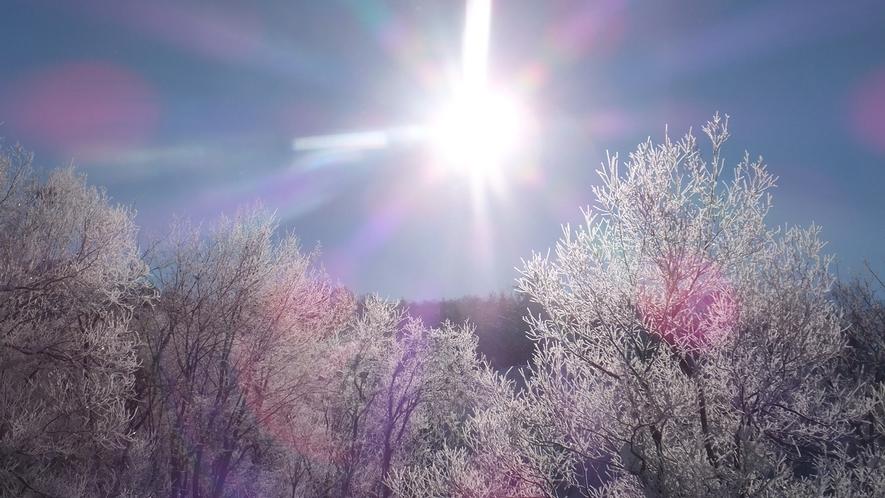 *「冬/雪景色」冬だからこその美しい風景