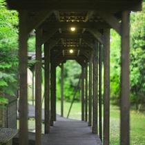 【渡り廊下】離れの客室利用の際には大自然を眺めながらご利用いただけます