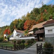 秋の堀庭園