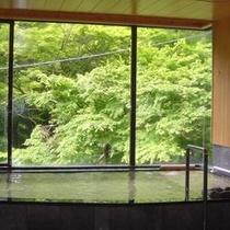 大浴場「彩」新緑