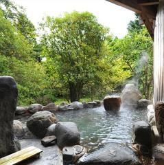 【日帰り】温泉+お夕食で気軽にリフレッシュ〜7.5時間ステイ〜