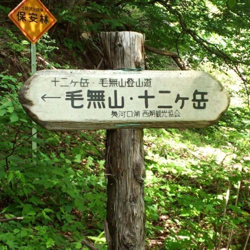 トレッキング/富士を囲む山々はトレッキング、トレイルランにも大人気!