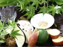 夏の京野菜籠盛り