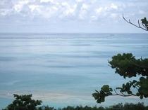 この海・・・いい眺め!・・・・・