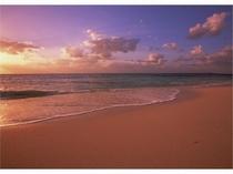 サンセットに染まっていく真っ白なビーチ・・・