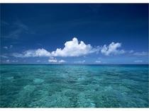 やんばるBlueの海・・・・・・