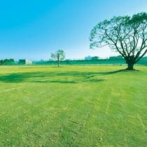 グラウンドゴルフ場(ご利用は事前にお問い合わせください)