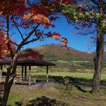 【景色】紅葉の季節は動きやすく景色も最高☆